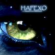 hafexo